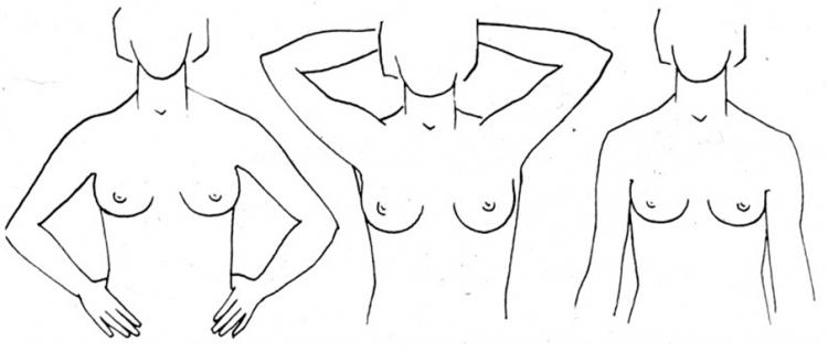 Forma e gjoksit tregon më së miri se çfarë tipi jeni në seks? Hidhini një sy