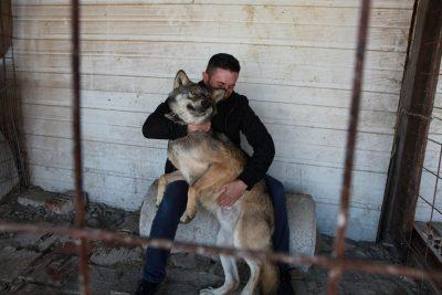 """Fermeri kosovar """"bën xhiro"""" në mediat botërore; e quan ujkun Trump"""
