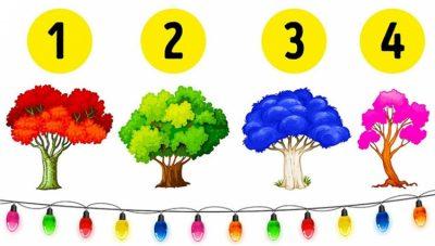 """Zgjidhni një pemë dhe zbuloni """"të fshehtat"""" që keni kur jeni në një marrëdhënie"""