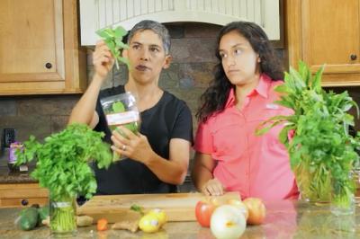 Ndërron jetë blogerja që besonte se veganizmi e shpëtoi nga kanceri