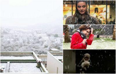 Më në fund DËBORË në Tiranë: Ja si po e shijojnë VIP-at shqiptar (FOTO)
