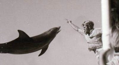 E KËRKOI VETË/ Rrëfehet burri që bëri seks me delfinin, çfarë i ndodh atij