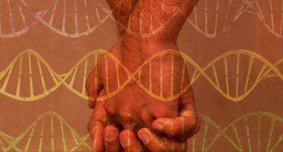 """Studim: """"Gjenet homoseksuale"""" në thuajse gjysmën e njerëzve të botës"""