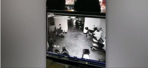 Kamerat e sigurisë e filmojnë dukë kryer akte seksuale, por diçka nuk shkon… (VIDEO)