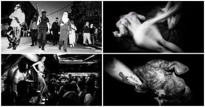 """Dyluftime me qen dhe festa seksi! Erdoğan publikon FOTO nga Stambolli pasi """"fiken dritat"""""""