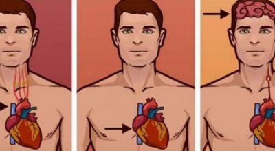 Dallimi midis atakut kardiak, pushimit të zemrës dhe goditjes në tru, shenjat paralajmëruese