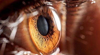Sytë blu janë shumë të veçantë, por ja pse njerëzit me sy kafe të bëjnë për vete