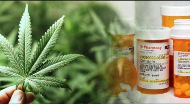 A e shëron droga kancerin? Ja si përgjigjen mjekët
