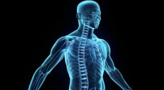 MUAJI I SHENJTË I RAMAZANIT/ Çfarë i ndodhë trupit gjatë agjërimit (VIDEO)