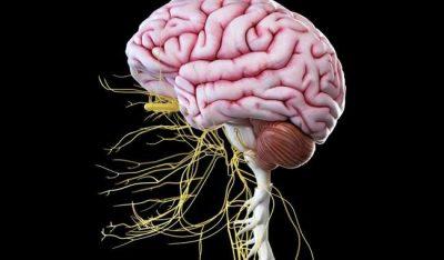 Bëni kujdes! Këto shenja tregojnë që ju keni dëmtim nervash!