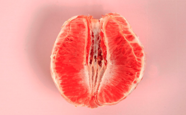 Ja kush janë 5 mitet për vaginën tuaj që nuk duhet t'i besoni (FOTO)