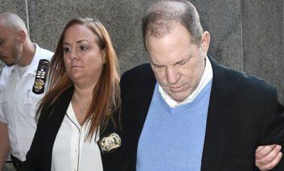 SË SHPEJTI/ Skandali seksual i Weinsteinit po projektohet në një film horror
