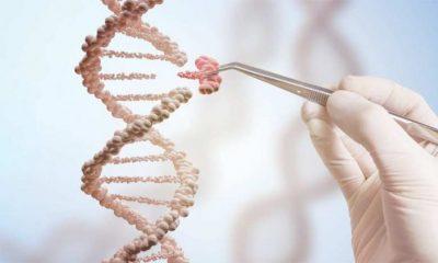 Kurat gjenetike efikase në luftën kundër kancerit