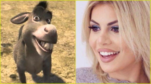 Fansja e krahason me gomarin e Shrekut, reagon Luana Vjollca: Sa gjynah më vjen kur… (FOTO)