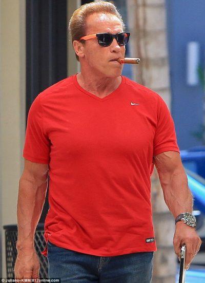 KAPEN MAT DUKE U PUTHUR/ Zbulohet lidhja e aktorit të njohur me vajzën e Arnold Schwarzenegger
