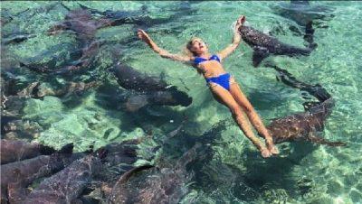 Çmimi i një fotoje për Instagram, modelja e pëson keq pas notit me peshkaqenët