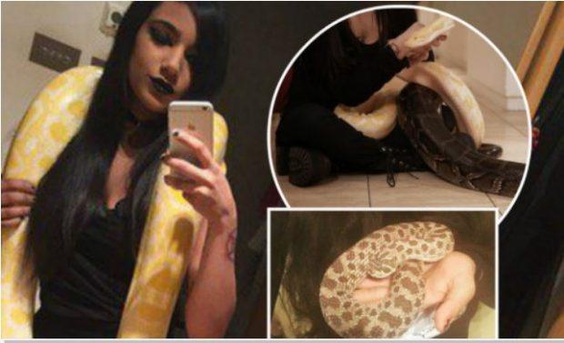 Flet adoleshentja që mban 16 gjarpërinj në shtëpi: Më kafshojnë çdo ditë, por…