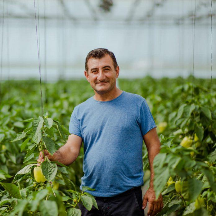MIDIS SFIDAVE/ Njihuni me historinë e fermerit që transformoi biznesin e tij (FOTO)