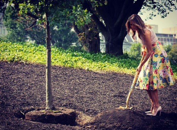 Melania Trump me veshje 4000 dollarë dhe me taka duke mbjellë pemë