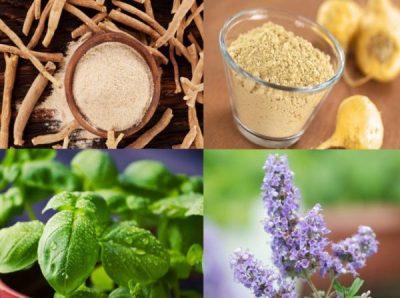 5 ushqimet që u ndihmojnë për të balancuar nivelin e hormoneve