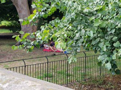 AKTE TË PAHIJSHME NË PUBLIK/ FOTOT: Çifti britanik bën seks në mes të parkut