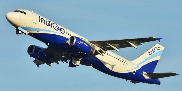 Burrit i ikën truri në sy të gruas, i fut duart pasagjeres ngjitur në avion. Kur ajo u zgjua nga gjumi…