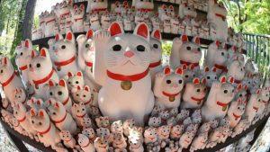 Njihuni me tempullin e maceve fatsjellëse
