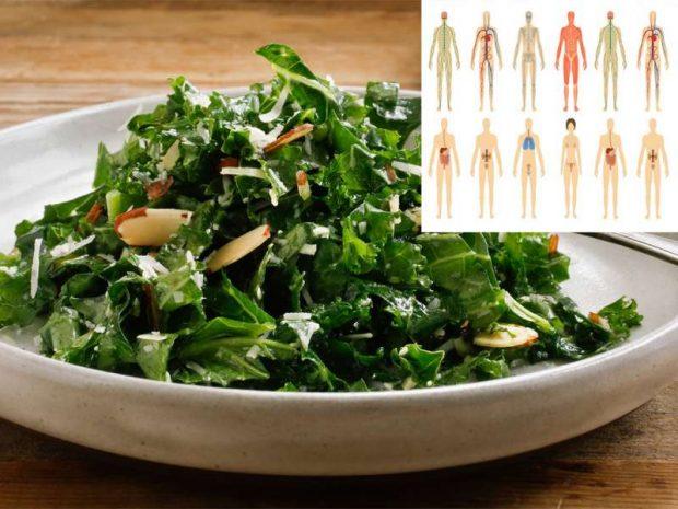 Dietologët bien dakord se sallata me më shumë përfitim për shëndetin është kjo