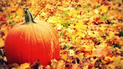 KULMI I PËRPJEKËVE/ Ja çfarë do ndodhë me shenjat e horoskopit në tetor