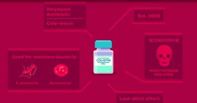 Përdorimi i antibiotikëve pa kriter dhe pa recetë, ul efektshmerinë