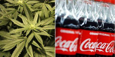 NDIHMËSE PËR NJËRZITË QË VUAJNË NGA DHIMBJET/ Coca-Cola do të prodhoj pije me kanabis