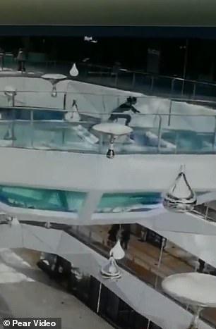 """""""KOHA E DREKËS""""/ Momenti dramatik kur gruaja bie në akuariumin me peshkaqenë (VIDEO)"""