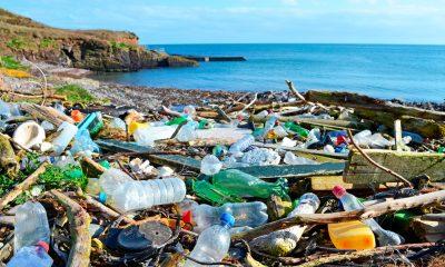 SHOKUESE/ Njerëzit po hanë plastikë dhe shkencëtarët japin alarmin
