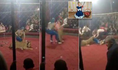 TMERROHEN SPEKTATORËT/ Luanesha sulmon 4-vjeçaren gjatë shfaqjes (VIDEO)