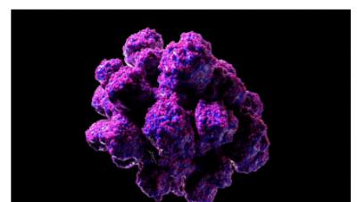 Virusi që vjen nga lashtësia/ Gjendet në ADN-në e njerëzve