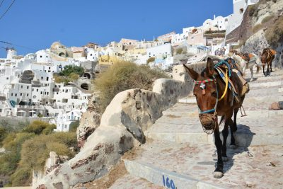 """""""LIGJI I VEÇANTË""""/ Turistët mbi 100 kile e kanë të ndaluar të… (FOTO)"""