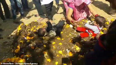 """E PAZAKONTË/ Në këtë vend realizohet rituali i """"ndyrë"""" i fëmijëve me jashtëqitje lope"""
