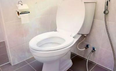 MJAFTOJNË VETËM 10 MINUTA/ Ktheni kokën në tualet për të zbuluar sëmundjet e rënda