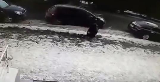E TMERRSHME/ Copa gjigande e akullit godet për vdekje një pensioniste (VIDEO)