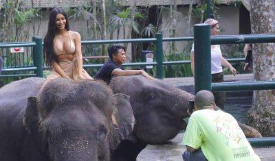 FORMA BOMBASTIKE/ Kim Kardashian pozon me bikini mbi elefant (FOTO)