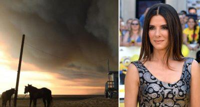 ZJARRET E KALIFORNISË/ Sandra Bullock dhuron 100 mijë dollarë