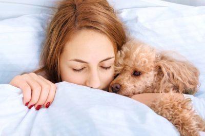 ME PARTNERIN APO KAFSHËT? Studimi zbulon se më kë flenë më qetë femrat!