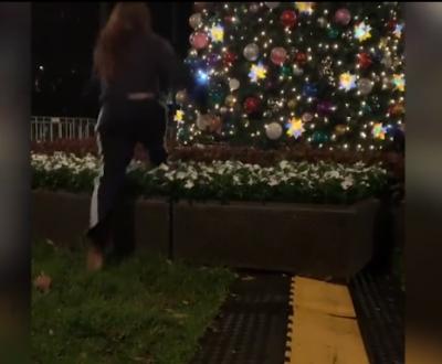 DO SHKRIHENI SË QESHURI/ Adoleshentja e dehur bie keq nga bredhi (VIDEO)
