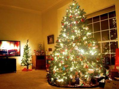 E DINIT? Ja çfarë kuptimi ka pema e Krishtlindjeve