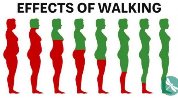NËSE ECNI ÇDO DITË/ Këto janë gjerat që i ndodhin trupit tuaj