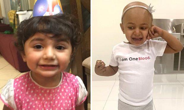 """Gjendet donatorja për shërimin e 2-vjeçares me """"gjakun"""" e rrallë"""