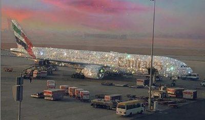 """E PABESUESHME/ Ky avion imbuluar me diamante po """"çmend"""" rrjetin (FOTO)"""