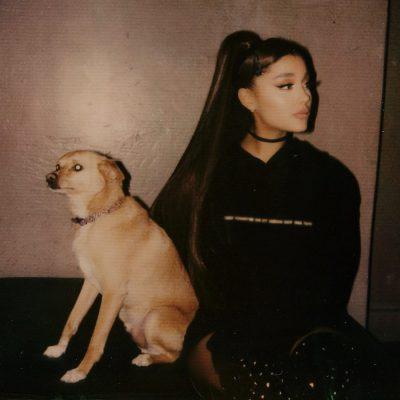 NUK I MBARUAN HALLET/ Ariana Grande anulon koncertin. Ja çfarë i ka ndodhur këngëtares (FOTO)