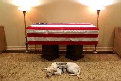 """""""MISIONI MBAROI""""/ Qeni shoqëron Bush për herë të fundit (FOTO)"""