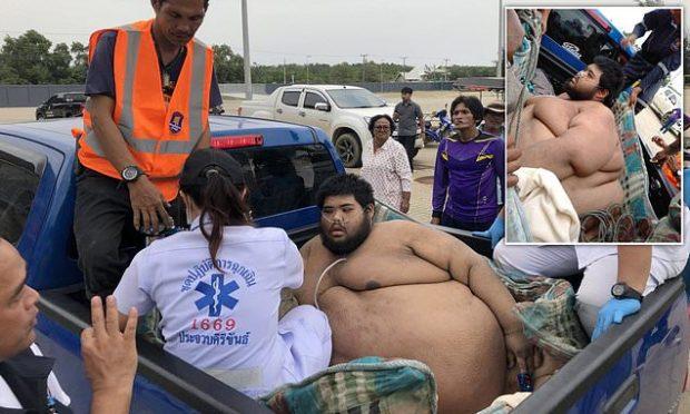 KALOI DY DEKADA DUKE NGRËNË AKULLORE/ I riu 317 kg i nënshtrohet trajtimit emergjent (FOTO)